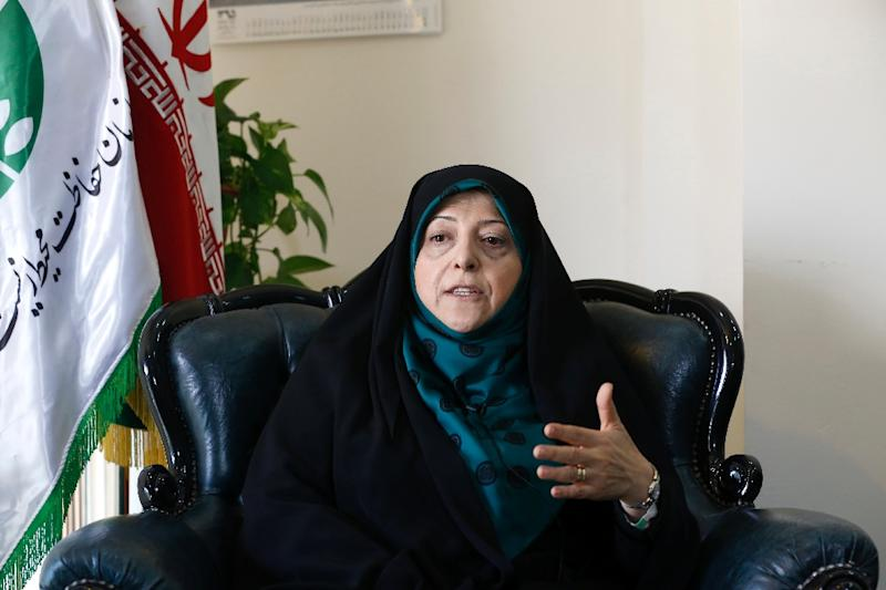Iran's vice-president and environment minister, Massoumeh Ebtekar, speaks to an AFP journalist during an interview in the capital Tehran (AFP Photo/Atta Kenare)