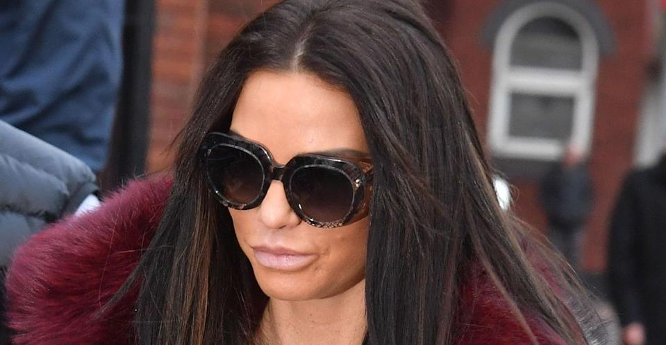 """Katie Price told MPs that """"the most horrific things"""" had been said to her disabled son Harvey"""