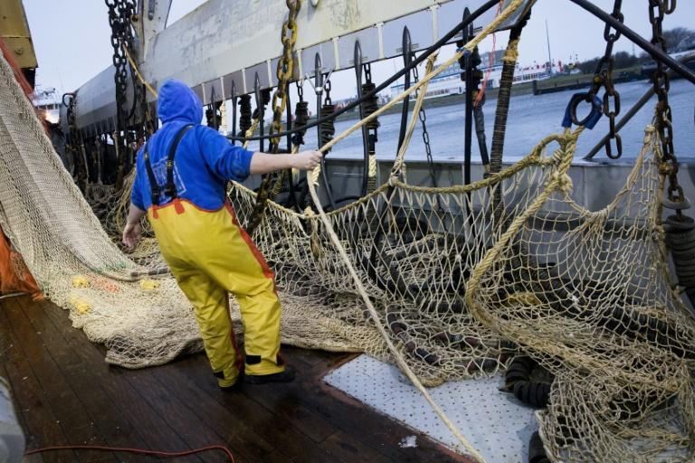 French fishermen are staging protests to seek a ban on pulse fishing in the North Sea