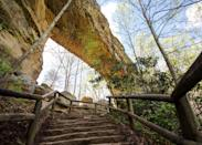 """<p><strong>Best camping in Kentucky:</strong> Middle Fork Campground, Natural Bridge State Park</p> <p>Kentucky's Red River Gorge is an area revered by <a href=""""https://www.cntraveler.com/story/a-beginners-guide-to-climbing?mbid=synd_yahoo_rss"""" rel=""""nofollow noopener"""" target=""""_blank"""" data-ylk=""""slk:climbers"""" class=""""link rapid-noclick-resp"""">climbers</a> for its flaky, Corbin sandstone, but travelers also come for the magnificent views and gargantuan stone arch. Hike or take the SkyLift to nab that perfect photo, then doze off to the burbling of the campground's creek.</p>"""