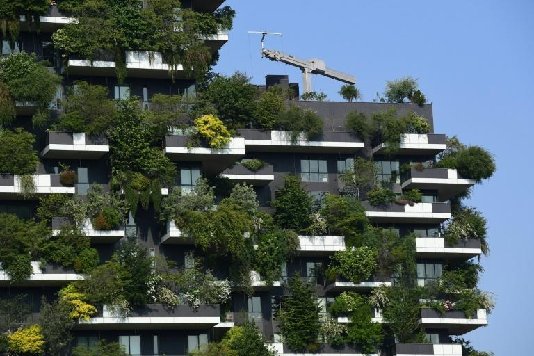With trees spilling over apartment balconies, Milan's Bosco Verticale is a forest in the sky
