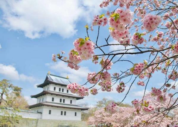 Hokkaido Cherry Blossoms: 8 Best Places To See Sakura (2020 Edition)