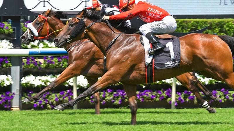 Rosehill Cup