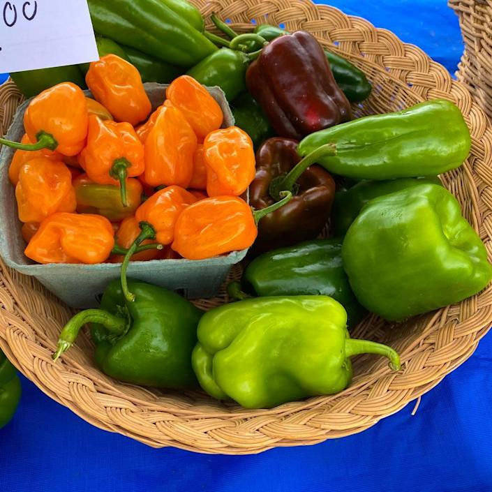 Camp North End Farmers Market will showcase local produce, eco-friendly products, seafood and more.