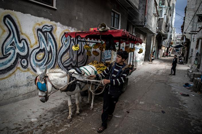 <p>A Palestinian boy sells bananas on a donkey cart in an alley in the Shati refugee camp in Gaza City</p> (Getty Images)