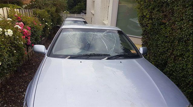 The mammal left its mark on the Camry. Source: Tasmania Police