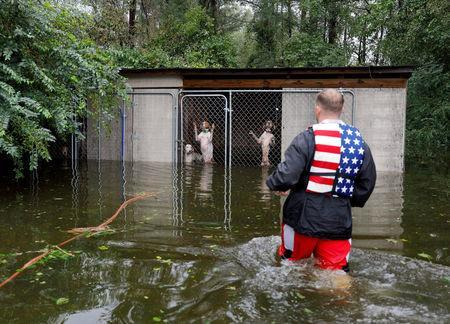 FILE PHOTO: Panicked dogs that were left caged by an owner who fled rising floodwater in the aftermath of Hurricane Florence, are rescued by volunteer rescuer Ryan Nichols of Longview, Texas, in Leland, North Carolina, U.S., September 16, 2018. REUTERS/Jonathan Drake/File Photo
