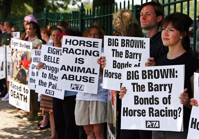 The death of Eight Belles at the 2008 Kentucky Derby was cause for protest that year as Belmont hosted the third leg of the Triple Crown. (Getty)