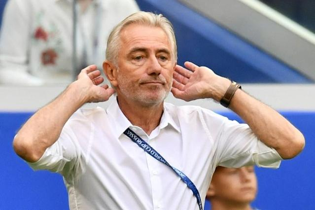Bert van Marwijk believes Australia have been unlucky at the World Cup