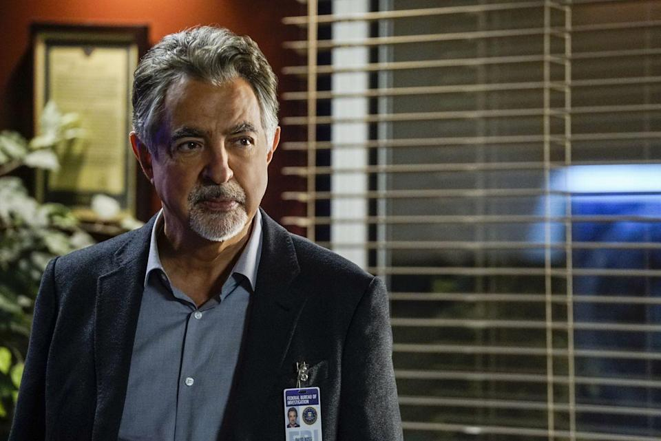 <p>As the senior supervisory agent, David Rossi serves as a kind of fatherly backbone of the team. Always the steady hand, Rossi is known for his bold decisions and stoic yet compassionate nature.</p><p>Joe Mantegna is known for his box office hits like <em>Three Amigos</em>, <em>The Godfather Part III</em>, <em>Forget Paris</em>, and <em>Up Close and Personal</em>. He starred on <em>Criminal Minds</em> from 2007 to 2020.</p>