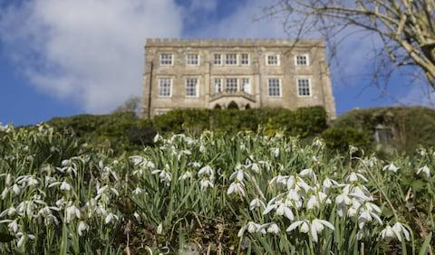 Newark Park - Credit: national trust