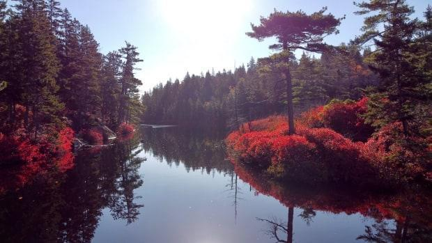 Charlies Lake is part of the expanded area of the Blue Mountain-Birch Cove Lakes Wilderness Area announced Thursday.