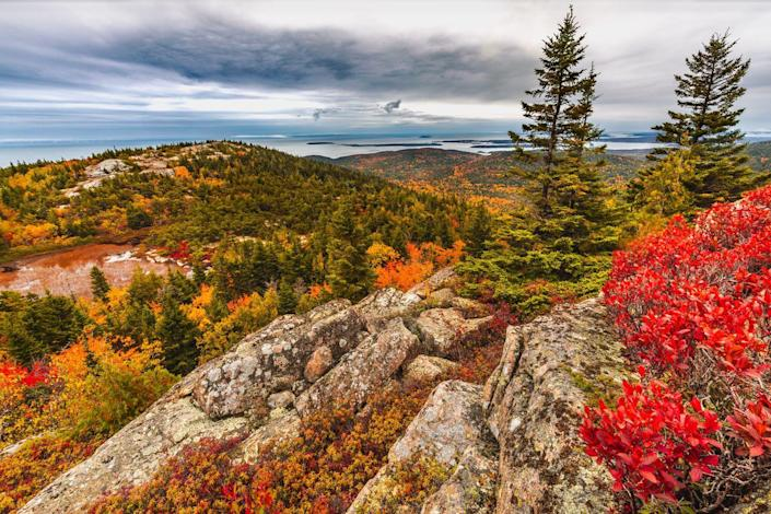 """<p>Spanning across Maine's Mount Desert Island, the Acadia National Park boasts thousands of acres of lush foliage in spectacular autumnal colors. The leaves of the hardwood trees typically start to change in late September all the way through mid-October. The famous 27-mile Park Loop Road weaves through the colorful landscape to ultimately land on top of Cadillac Mountain which offers impeccable views of the entire park. <br><em><br>Where to Stay: <a href=""""https://www.theweststreethotel.com/bar-harbor-hotels/"""" rel=""""nofollow noopener"""" target=""""_blank"""" data-ylk=""""slk:West Street Hotel"""" class=""""link rapid-noclick-resp"""">West Street Hotel </a>in Bar Harbor, Maine</em></p>"""