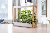 """<p>For your friend who fancies themselves a green thumb but doesn't have the space (or energy) for a full herb garden, a countertop garden makes for a thoughtful and useful gift. The Personal Rise Garden is controlled by an app and helps the user — excuse us, <em>gardener</em> — grow fresh produce all year round.</p> <p><strong>Buy It! </strong>Personal Rise Garden, $279; <a href=""""https://risegardens.com/products/personal-indoor-garden"""" rel=""""nofollow noopener"""" target=""""_blank"""" data-ylk=""""slk:risegardens.com"""" class=""""link rapid-noclick-resp"""">risegardens.com</a></p>"""
