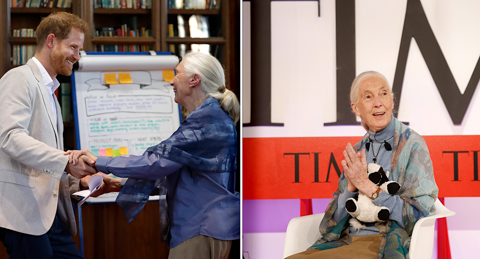 Jane Goodall is pictured left with Prince Harry. On the right she sits in front of a Time magazine logo.