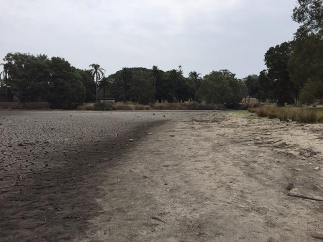 Pictured are the dry, brown banks of Busbys Pond in Centennial Parklands.
