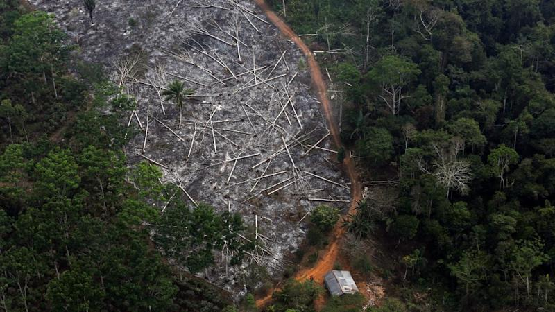 An aerial view of a deforested plot of the Amazon at the Bom Futuro National Forest in Porto Velho, Rondonia State, Brazil, September 3, 2015.