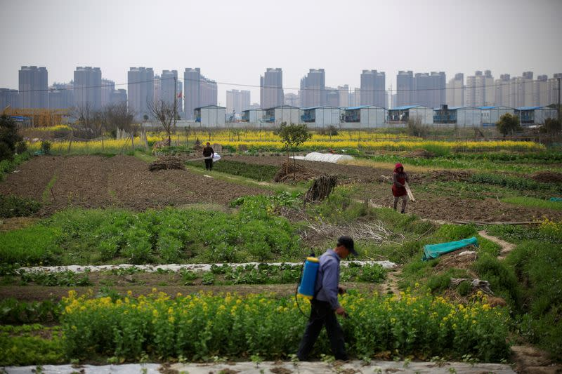 FILE PHOTO: A farmer works on a farm in front of a construction site of new residential buildings in Shanghai