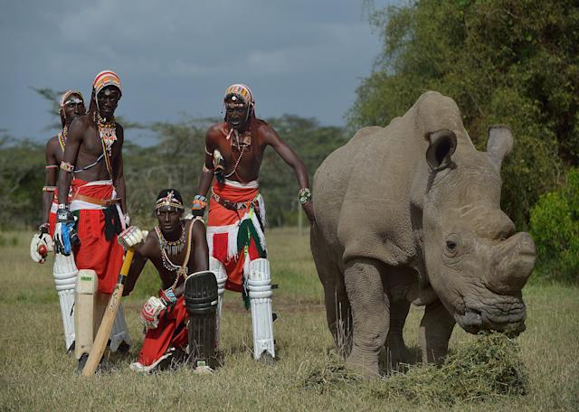 Members of Maasai Cricket Warriors, a cricket team famed for using the sport to raise awareness for HIV/AIDS, women's issues and now the devastating effects of poaching, visit Sudan.