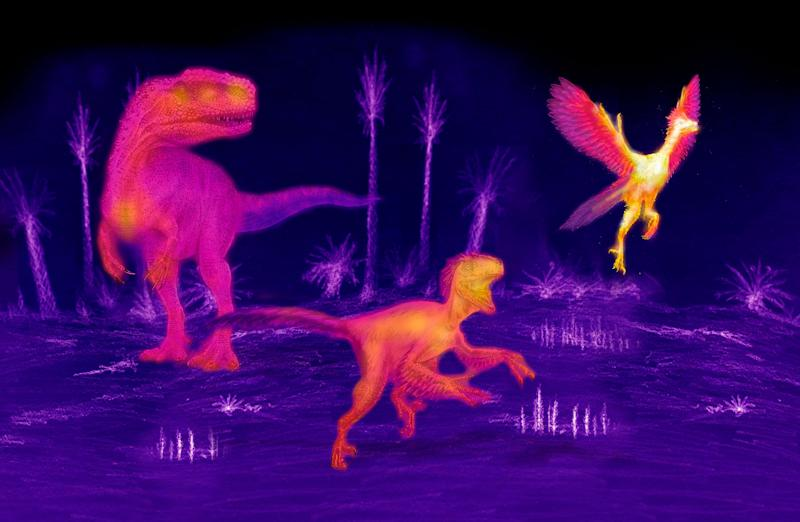 Dinosaurs evolved higher metabolism as they decreased in size to give rise to warm-blooded birds.