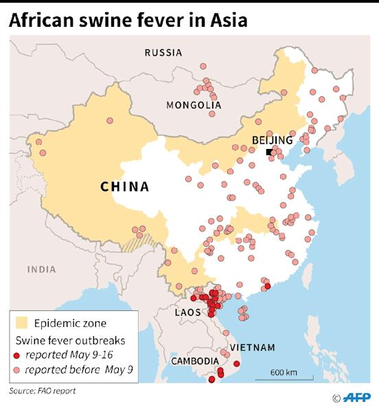 African swine fever in Asia (AFP Photo/Alice LEFEBVRE)