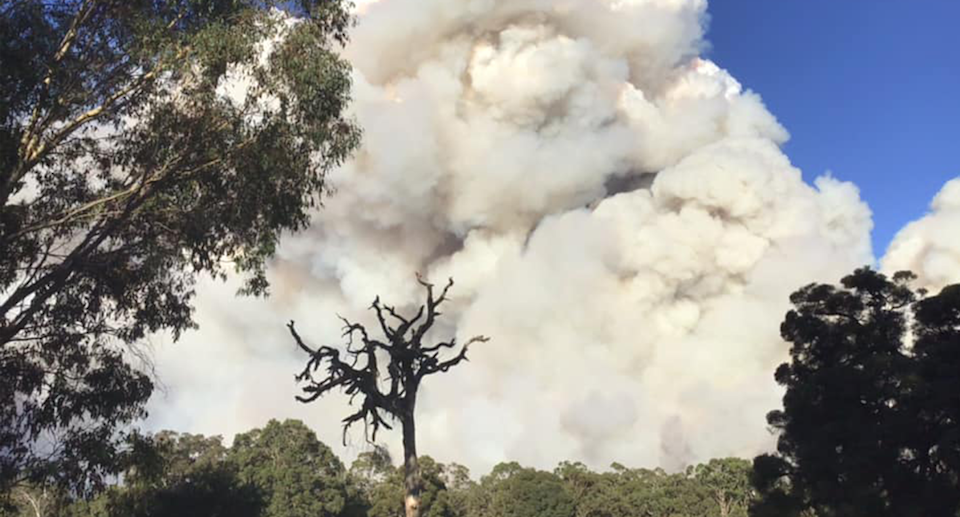 The prescribed burn at Perup in Western Australia is now complete. Source: Darryn Ward