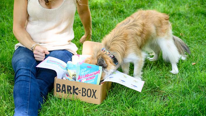 Best subscription gifts: Barkbox