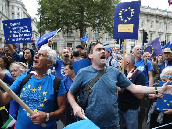An anti-Brexit march in Westminster after the referendum (AFP)