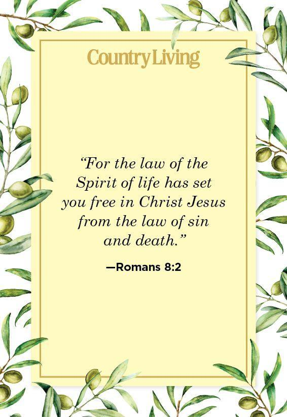 """<p>""""For the law of the Spirit of life has set you free in Christ Jesus from the law of sin and death.""""</p>"""