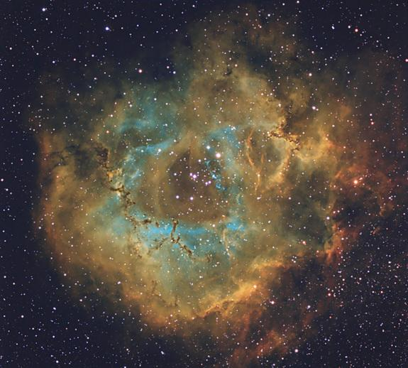 Rosette Nebula's Colorful Bloom Shines in Gorgeous Amateur Astronomer Photo