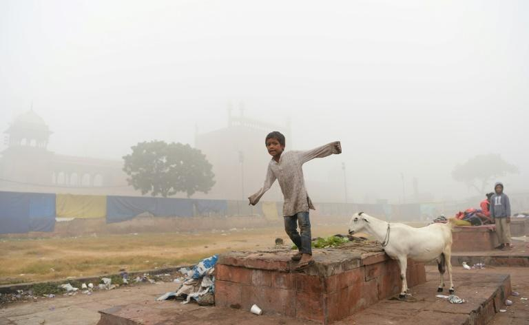 UNICEF says India tops the list of countries with babies at risk from pollution, followed by China