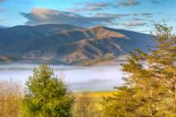 """<p><strong>Best camping in Tennessee:</strong> Cades Cove Campground, Great Smoky Mountains National Park</p> <p>Each year, over 2 million visitors flock to the <a href=""""https://www.cntraveler.com/branded/article/cnt/gatlinburg?mbid=synd_yahoo_rss"""" rel=""""nofollow noopener"""" target=""""_blank"""" data-ylk=""""slk:Great Smokies"""" class=""""link rapid-noclick-resp"""">Great Smokies</a> to marvel at colorful bursts of <a href=""""https://www.cntraveler.com/gallery/where-to-see-blooming-flowers-around-the-world?mbid=synd_yahoo_rss"""" rel=""""nofollow noopener"""" target=""""_blank"""" data-ylk=""""slk:spring wildflowers"""" class=""""link rapid-noclick-resp"""">spring wildflowers</a> and fiery fall foliage. Camping in the middle of it all is the best way to see and experience this massive park. Drive the scenic, 11-mile Cades Cove Loop Road, then try to spot black bears and wild turkeys from right outside your tent (but hopefully, not too close). </p>"""