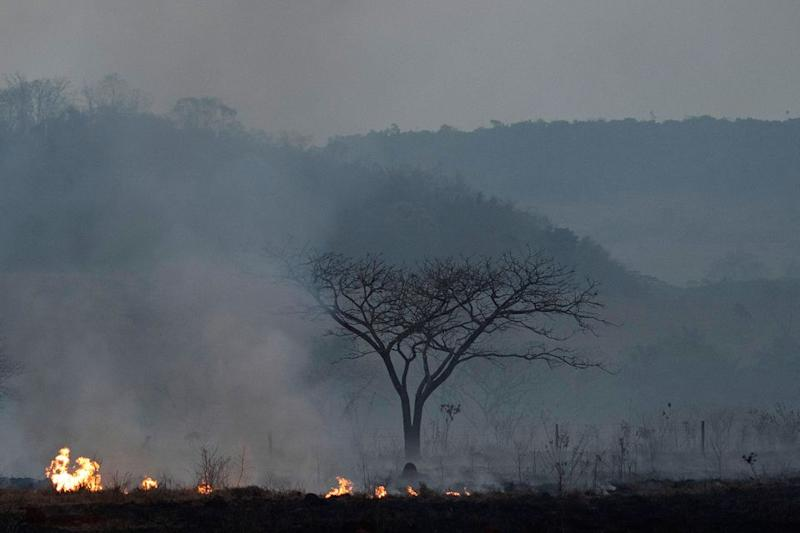 Fire consumes a field alongside the BR 163 highway in Nova Santa Helena municipality, Mato Grosso State, Brazil, Friday, Aug. 23, 2019.