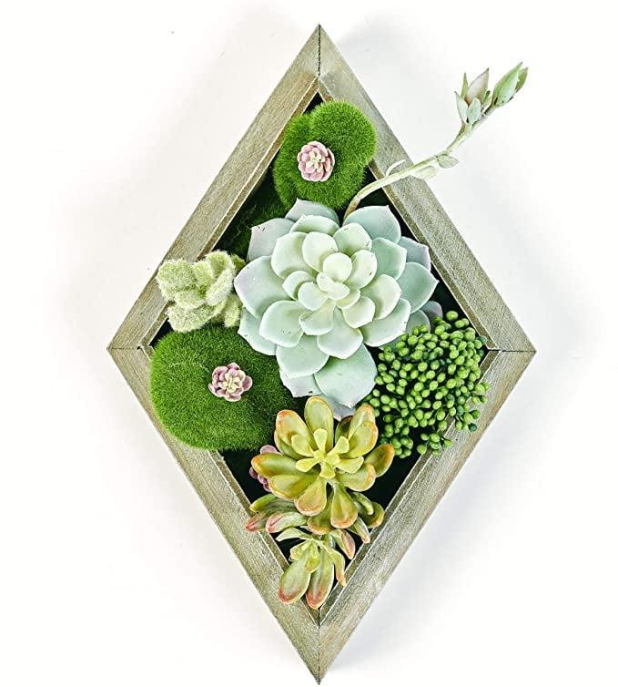 <p>Make a statement on your wall with this <span>Room &amp; Bloom Artificial Succulent Wall Hanger</span> ($23).</p>