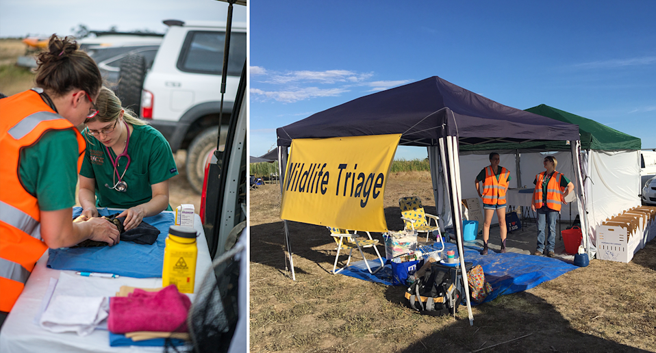 Split screen. Left - Two vets treat an injured vet inside the triage centre. Right - A view of the triage tent out in the field.