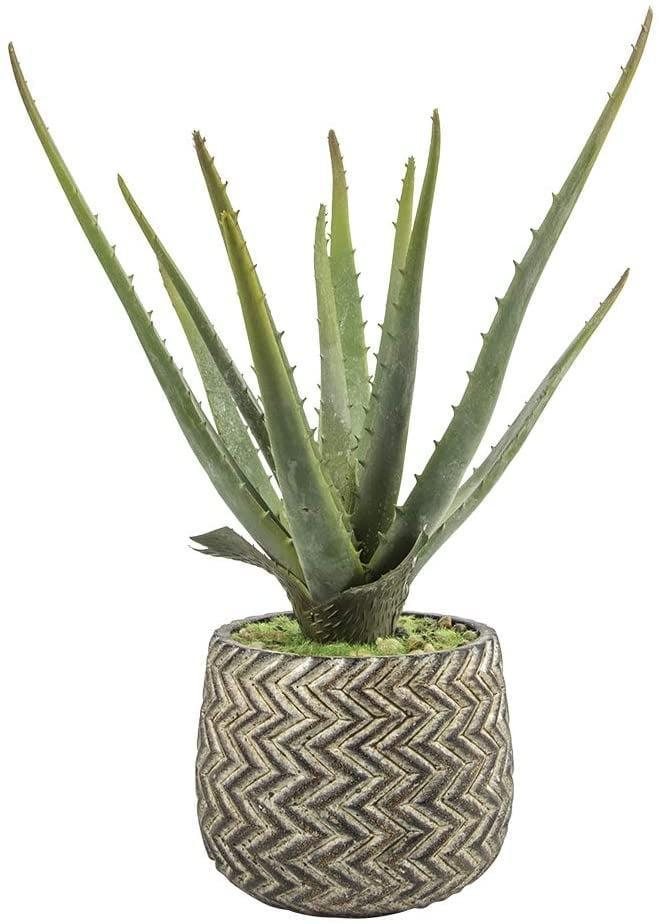 <p>If you can't keep the real thing alive, the <span>Ferrisland Artificial Aloe Potted Plant with Antique Cement Pot</span> ($23) is a gorgeous and realistic find.</p>