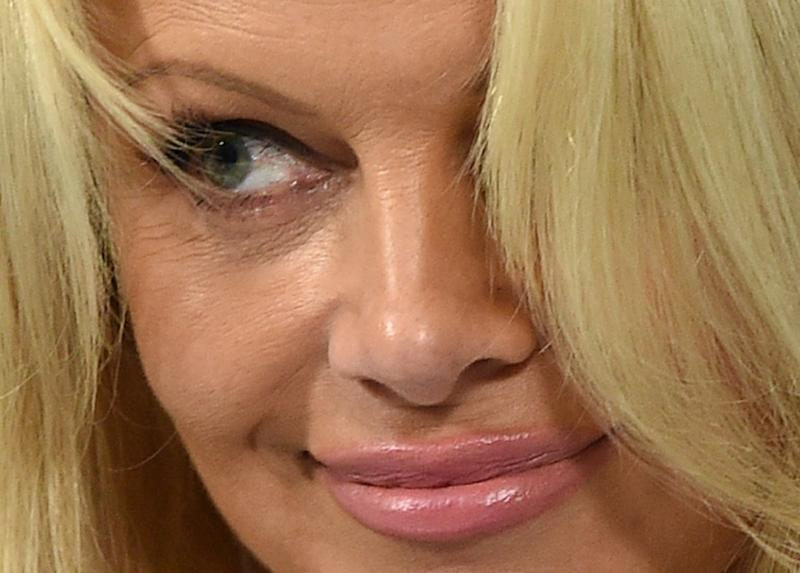 Pamela Anderson Visits Kremlin To Lobby For Animal Protection