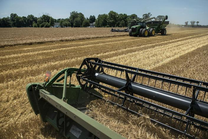 US corn and soybean crops could break records this year, but for farmers the bounty has a dark side: falling prices and a logistics nightmare getting crops to market (AFP Photo/Brendan Smialowski)