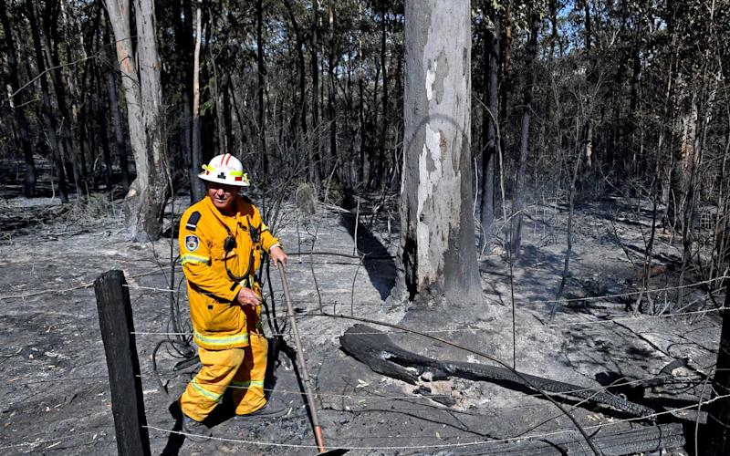 A Rural Fire Service (RFS) firefighter walks through the perimeter of an extinguished blaze in the township of East Kurrajong, on October 26, 2019 near Sydney, Australia. The rural Rural Fire Service (RFS) has announced that 59 bush or grassfires are currently burning across the Australian state on Saturday, with total fire bans in place for many regions because of high temperatures and winds. | Sam Mooy/Getty Images