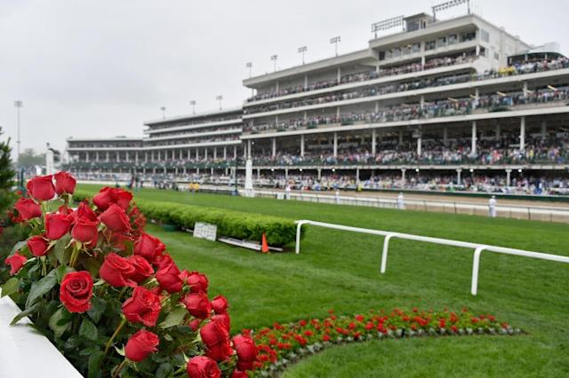 Five-year-old Accelerate arrives at Churchill Downs having won three straight races and is the early 5-2 favorite despite drawing the far outside No. 14 post (AFP Photo/Dia Dipasupil)
