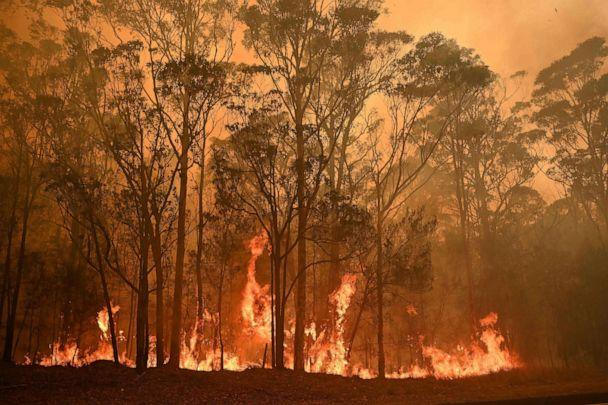 PHOTO: A bushfire burns in the town of Moruya, south of Batemans Bay, in New South Wales, Australia, Jan. 4, 2020. (AFP via Getty Images)