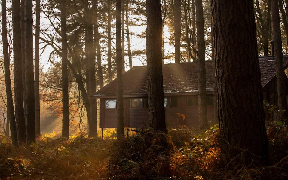 The new cabins at Delamere - Paul Box