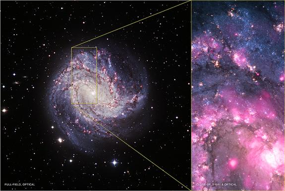 At left is an optical view of M83. At right is a composite image showing X-ray data from Chandra in pink and optical data from the Hubble Space Telescope in blue and yellow. The ULX is located near the bottom of the composite image.