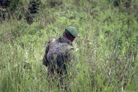 A member of the Congolese military searches an area leading to where bodies were found near to where a U.N. convoy was attacked and the Italian ambassador to Congo killed, in Nyiragongo, North Kivu province, Congo Monday, Feb. 22, 2021. The Italian ambassador to Congo Luca Attanasio, an Italian Carabineri police officer and their Congolese driver were killed Monday in an attack on a U.N. convoy in an area that is home to myriad rebel groups, the Foreign Ministry and local people said. (AP Photo/Justin Kabumba)