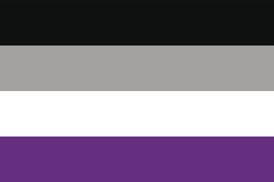 """<p>In 2010, the Asexual Visibility and Education Network stated that they wanted to """"have a symbol that belongs to all of us."""" The flag is inspired by their logo; Black represents asexuality, gray for graysexuals (between sexual and asexual) and demisexual (<a href=""""https://www.nytimes.com/2017/05/19/style/modern-love-not-friends-then-no-benefits.html"""" rel=""""nofollow noopener"""" target=""""_blank"""" data-ylk=""""slk:sexual attraction following emotional connection"""" class=""""link rapid-noclick-resp"""">sexual attraction following emotional connection</a>). Purple represents community. </p>"""