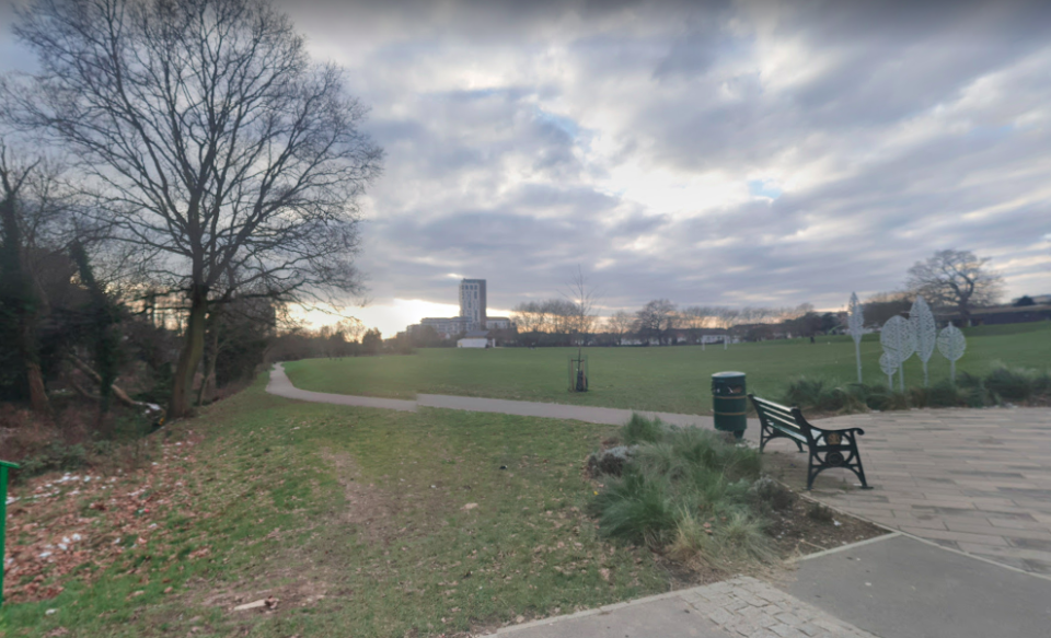 Seven males have been arrested in connection with the death of an 18-year-old at Montrose Park in north London. (Google)