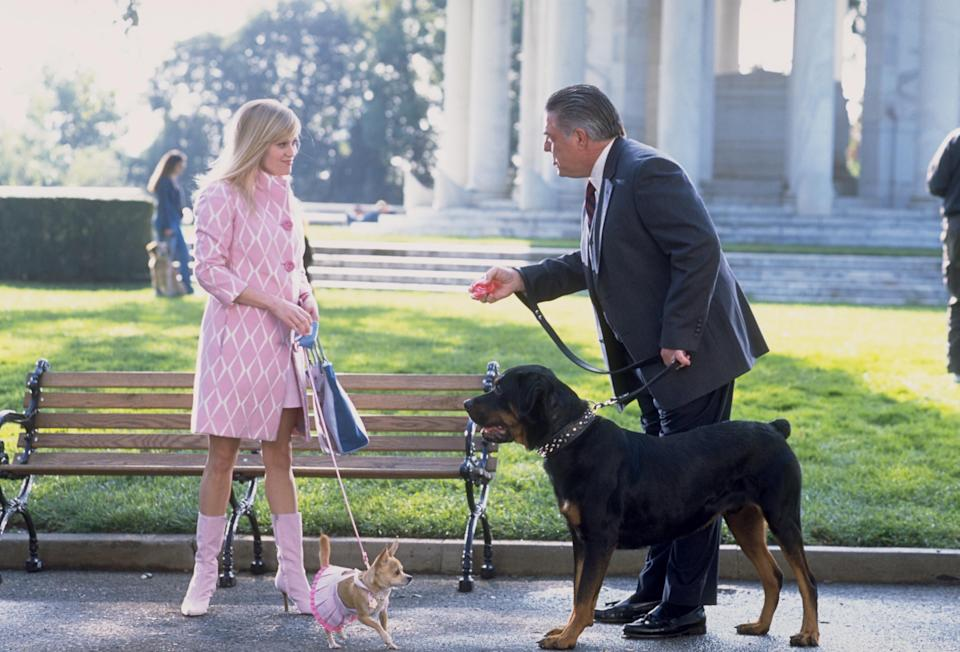 Elle Woods (Reese Witherspoon) and her dinky Chihuahua, Bruiser, in 'Legally Blonde' in 2001Sam Emerson/Mgm/Kobal/Shutterstock