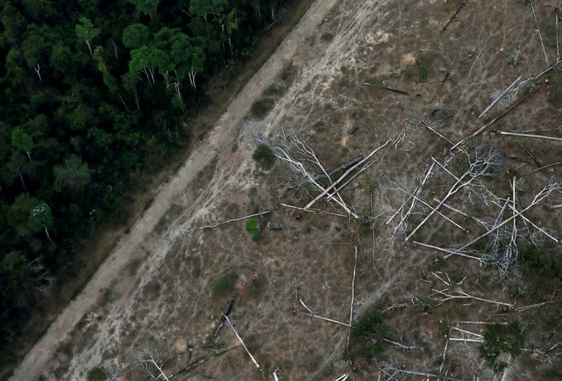 FILE PHOTO: An aerial view shows a deforested plot of the Amazon near Porto Velho