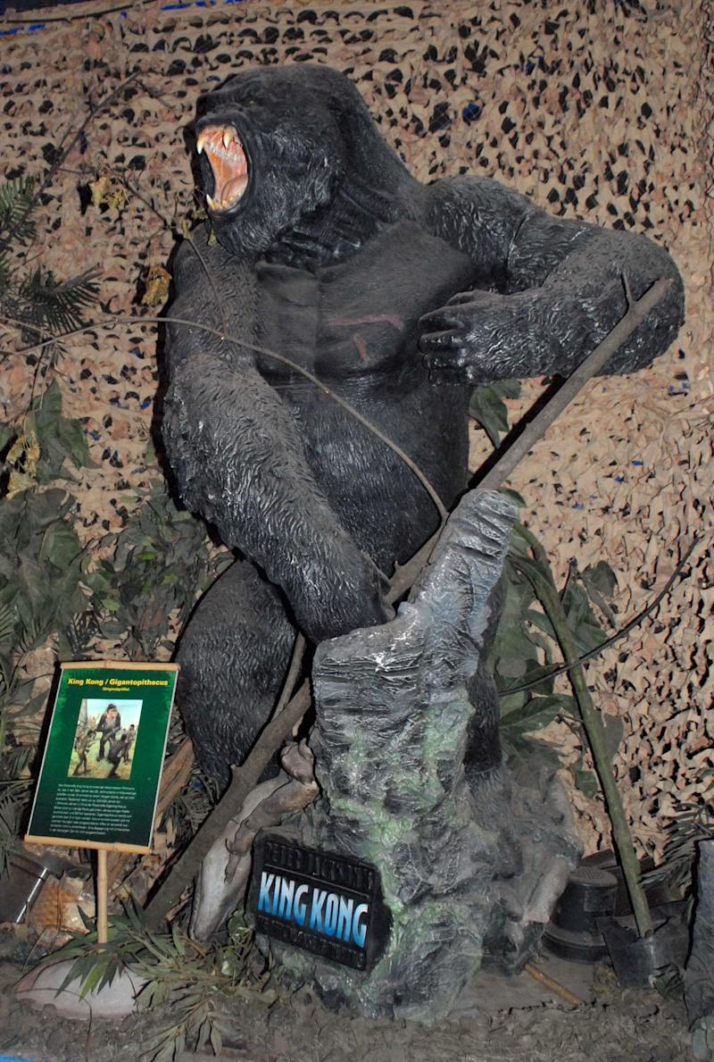 "King Kong / Gigantopithecus, Dinosaurier-Austellung, ""Die Welt der Dinos"" ("" World of Dinosaurs"") - ""Im Reich der Giganten"", Messe Centrum Bremen, Deutschland, Europa, Ausstellung, ausgestorbenes Tier (Modell), Reise, AS, DIG; P.-Nr.: 585/2011, 20.05.2011; (Photo by Peter Bischoff/Getty Images)"