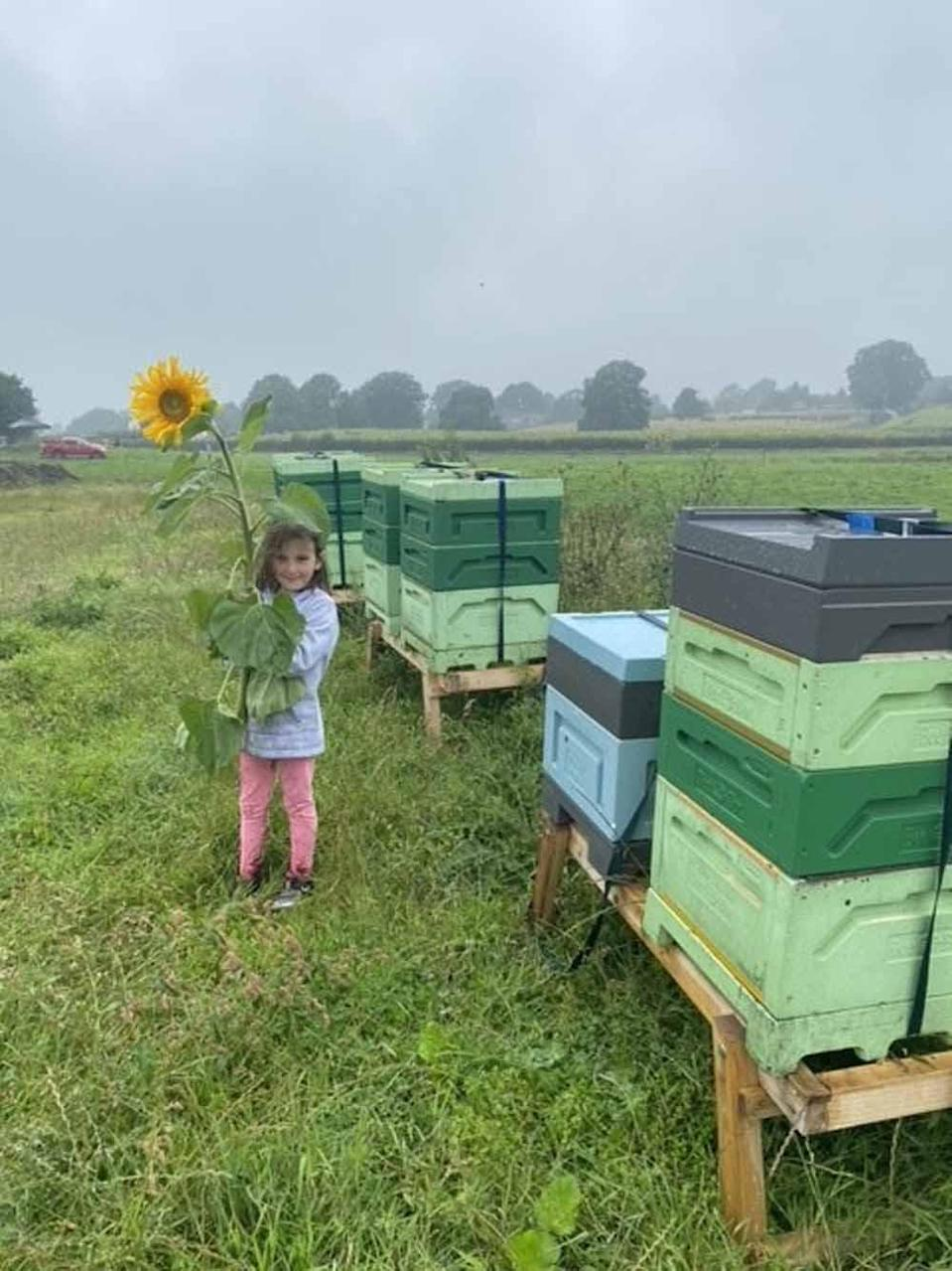 Sally's daughter Chloe, 7, loves raising the bees (Collect / PA Real Life).